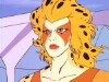http://thundercats.org/cartoon-images/episodeguide/055-jackalmansrebellion/thumbnails/9.jpg