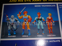LJN ThunderCats Prototypes -Cheetara with red baton