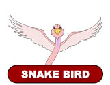 ThunderCats Encyclopedia - Snake Bird