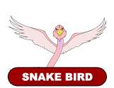 ThunderCats Encyclopedia - Snake Bird